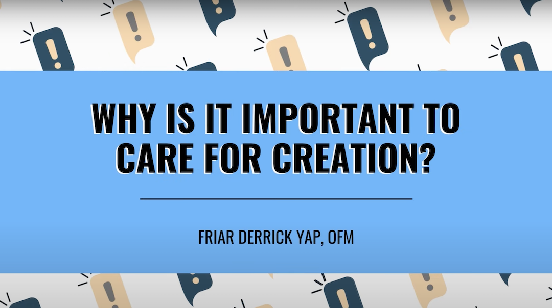 Why is it Important to Care for Creation?